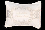 Pesach Pillow Cover