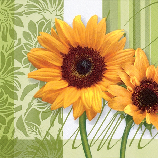 Tournesol Green Decorative Lunch Napkins 20 ct
