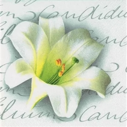 Lilium Candidum Decorative Napkins - 20 ct