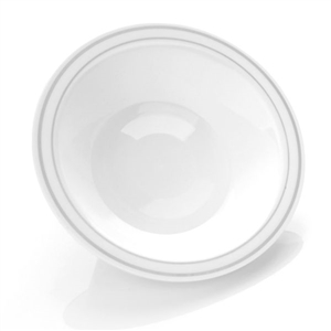 14oz White and Silver China Like Plastic Plates 10 Count