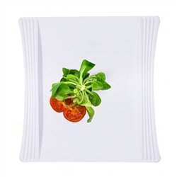 "9.5"" Hotelware Plastic Plates - 120 count"